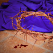 Crown of Thorns — Stock Photo #13484070