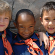 Cub Scouts - Stock Photo