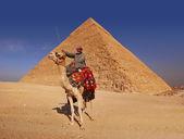 Beduinos y pirámide — Foto de Stock