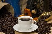 Coffee Landscape — Stock Photo