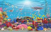 Underwater Paradise — Stock Photo