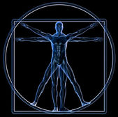 Vitruvian Man — Stock Photo