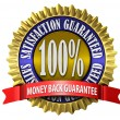 Satisfaction Guaranteed Seal — Stockfoto