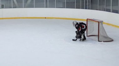 Goalkeeper in hockey — Stock Video