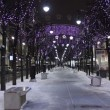 Stock Video: St. Petersburg, Twinkle lights at night