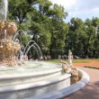 Stock Video: Large Fountain of Summer Garden, St. Petersburg