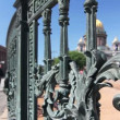 Wrought iron lattice and St. Isaac Cathedral, Saint-Petersburg, Russia — Stock Video #14819421