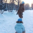 Stock Video: Young mother sledding his child in park