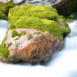 Long exposure image of a mountain stream flowing trough stone. — Stock Photo