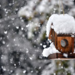 Bird house in winter — Stock Photo