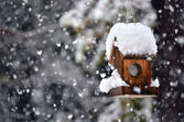 Bird house in winter — Stockfoto