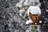 Bird house in winter — Stock Photo