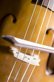 Detail of cello strings and bow — Stock Photo