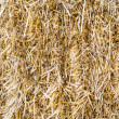 Hay background — Stock Photo #30934587