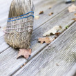 Sweeping wooden porch — Stock Photo