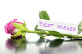 Best wishes — Foto Stock