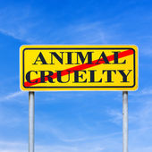 Stop animal cruelty — Stock Photo