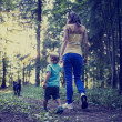 Woman and child walking a dog in the forest — Stock Photo #41610539