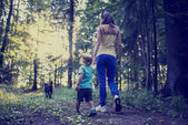 Woman and child walking a dog in the forest — Stock Photo