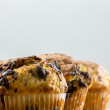 Freshly baked muffins — Stock Photo #46980169