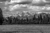 Greyscale image of Slovenian mountains — Stock Photo
