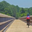 Biker Crosses Wooden Bridge in Rural Virginia — Stockfoto #12627556