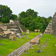 Tikal Pyramid Complex in Guatemala — Stock Photo