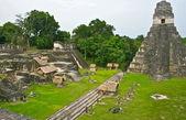 Tikal Pyramid Complex in Guatemala — Stock Photo