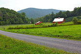 Country Road Along the Blue Ridge Parkway — Stock Photo