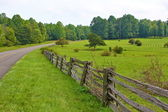 Country Road in Rural Virginia — Stock Photo