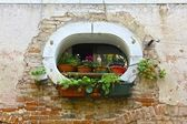 Unique Window and Potted Plants on Venice Building — Stock Photo