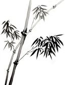 Ink Painting of Bamboo Branch — Stock Photo
