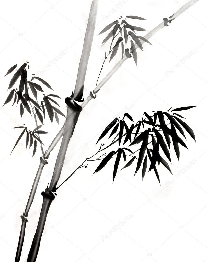 a Bamboo Branch And Leaves