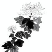 Chinese Flower Painting — Stock Photo