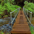 Scenic bridge below Lone creek fall - Stock Photo