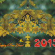 Happy New Year 2013! — Stock Photo