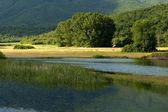 Jezero kerkini v řecku nord. — Stock fotografie