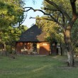 Dwelling house in Kudus Rus game lodge — Stock Photo