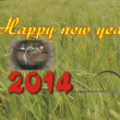 Happy new year greeting for 2014 — Stock Photo