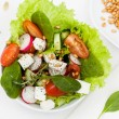Fresh salad  with wheat germ — Stock Photo