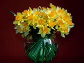 Daffodils in a round vase — Stock Photo