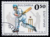крикет — Стоковое фото