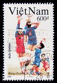 Volleyboll — Stockfoto