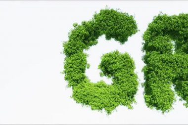 Green leaves text — Stock Video