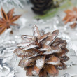 Christmas decorations, pine cones and star anise — Stock Photo #13866285
