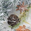 Christmas decorations, pine cones and star anise — Stock Photo