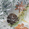 Christmas decorations, pine cones and star anise — Stock Photo #13866288