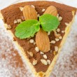 Piece of pumpkin cheesecake closeup — Stock Photo #14615077