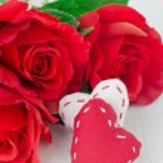 plátno ručně srdce a červené růže na Valentýna — Stock fotografie #18174885