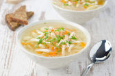 Vegetable soup with chicken and parsley horizontal — Stock Photo